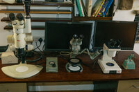Some lower to medium power microscopes
